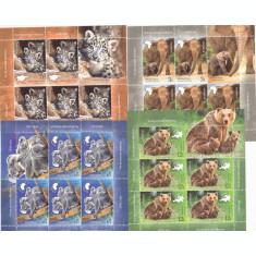 PUI DE ANIMALE SALBATICE,MINISHEET,5 SET TIMBRE + VIGNETA,2019 MNH ** ROMANIA.