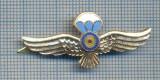 AX 771 INSIGNA - SEMN DE ARMA PARASUTISTI -PENTRU COLECTIONARI