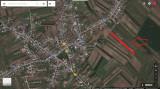 Teren intravilan 7500 mp in Sabareni 15,7 euro/mp, parcelat - direct proprietar