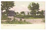 5168 - CRAIOVA, Bibescu Park, Romania - old postcard - unused