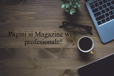 Site web de prezentare de la 40 de euro! foto