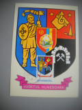 HOPCT  MAXIMA 72704 HUNEDOARA  - STEMA JUDETULUI / HERALDICA - ROMANIA, Romania de la 1950