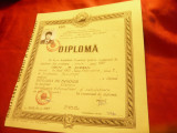 Diploma la Facultatea Automatica si Calculatoare 2002 IPB
