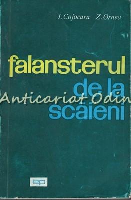 Falansterul De La Scaieni - I. Cojocaru, Z. Ornea foto