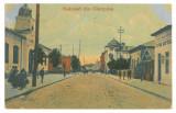 4775 - CAMPINA, Prahova, Romania - old postcard - unused