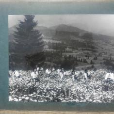 Pionieri culegand flori dintr-un camp// fotografie