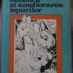 GENETICA SI AMELIORAREA IEPURILOR - SANDU GHEORGHE