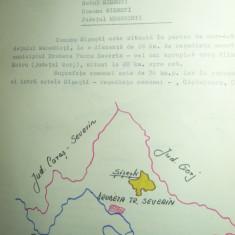Monografie - Casa Polina Omir- Satul Sisesti judet Mehedinti , 7 pag.+6fotografi