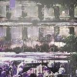 Album de arta - Ioana Augustin Pop | Ioana Augustin Pop, Brumar