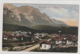 Busteni ,Suvenir de la Busteni , Valea Alba, Necirculata, Printata