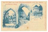 4967 - SIBIU, Litho, Romania - old postcard - used - 1900, Circulata, Printata