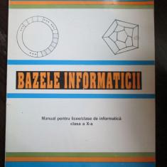 Bazele informaticii clasa a 10-a