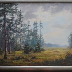 Peisaj de padure ; Pictor consacrat german , anii 50 ; ulei / carton , dim. mari