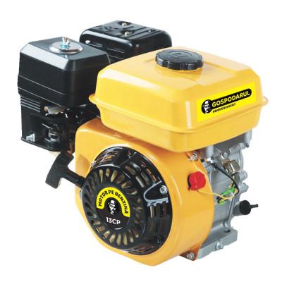 Motor uz general Gospodarul profesionist GP-188F, 3600 kW, 13 CP, 6.5 l, 389 CC foto