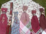 6/Cravate /tema vanatoare/