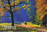 Carte postala Bucovina SV178 Joia de lemne
