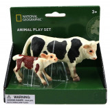 Set 2 figurine Taur si vitel National Geographic, 3 ani+