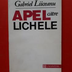 APEL CATRE LICHELE × Gabriel liiceanu