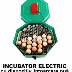 Incubator Electric Clocitoare 60 Oua Cleo 5 cu Cheita Intoarcere