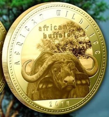 Zambia 1000 Kwacha 2014 UNC  Bivol african  40mm Auriu foto