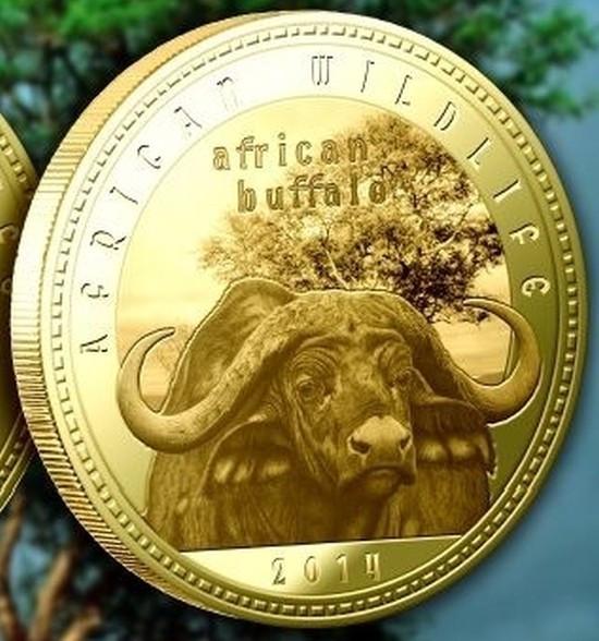 Zambia 1000 Kwacha 2014 UNC  Bivol african  40mm Auriu
