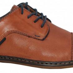Pantofi barbati casual Rieker 13409-24 Brandy
