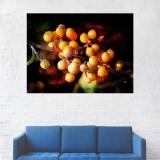 Tablou Canvas, Pictura Artistica Fructe Portocalii - 40 x 50 cm