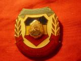 Insigna Militara Evidentiat in Pregatirea pt.Apararea Patriei ,h=4cm metal si em