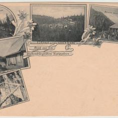 1898 CP ilustrata litho SKV Hohe Rinne, vedere multipla Paltinis