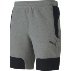 Pantaloni scurti barbati Puma Evostripe 58148703