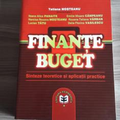 Finante buget. Sinteze teoretice si aplicatii practice