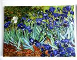 Reproducerea picturii Vincent van Gogh Irises  textură pictată manual 50x70cm