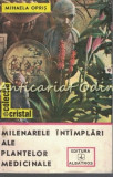 Milenarele Intimplari Ale Plantelor Medicinale - Mihaela Opris
