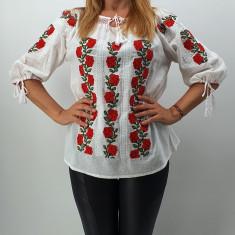 Ie Traditionala Lorena