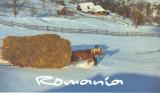 Carte postala Bucovina SV141 Paltinu - Iarna cea mai lunga - necirculata