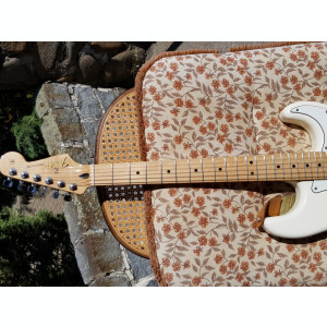 Fender Stratocaster Arctic White - Made in Mexico