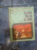 W0 Rodica Ojog-Brasoveanu - Cianura pentru un suras