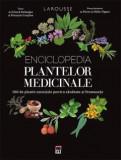 Enciclopedia plantelor medicinale Francois Couplan, Gerard Debuigne