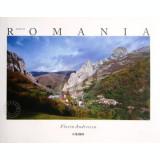 Made in Romania - Florin Andreescu
