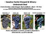 Struguri Rosii, Must si Vin Vrac Rosu/Roze optinut din struguri Certificati