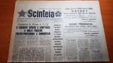 """ziarul scanteia 30 noiembrie 1979-art. """" otelul de calarasi """""""