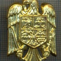 Y 1534 INSIGNA-MILITARA  -EMBLEMA COIFURA -PENTRU COLECTIONARI