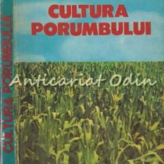 Cultura Porumbului - Florea Gruia