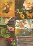 Vederi flori 200, Printata, Europa