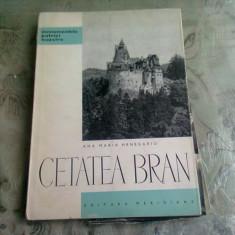 CETATEA BRAN - ANA MARIA HENEGARIU