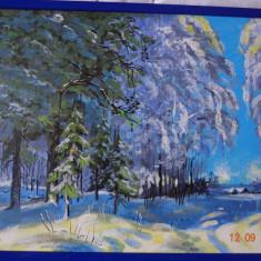 pictura,tablou acrilice