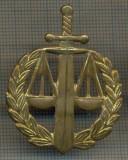Y 1537 INSIGNA- MILITARA -SEMN DE ARMA - JUSTITIE MILITARA  -PENTRU COLECTIONARI