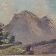 Tablou , pictură ., Natura, Guasa, Altul