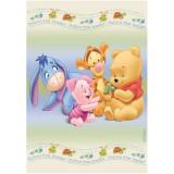 Covor copii Play Pooh model 403 160x230 cm Disney