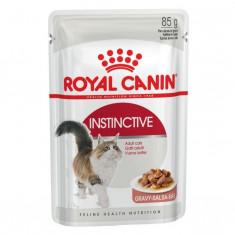 Hrana umeda pentru pisici Royal Canin, Instinctive, in sos, plic 85g